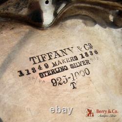 Tiffany Et Co Ornement Pichet D'eau En Argent Sterling 1905